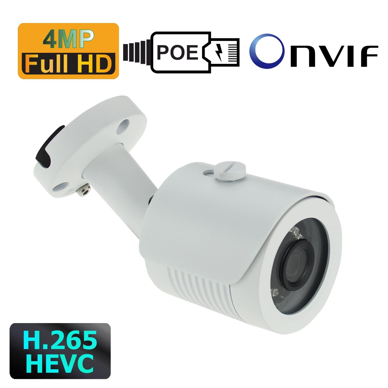 IP Kamera mit 4MP Auflösung, PoE und 20m Infrarotreichweite